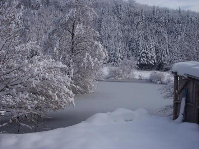 La neige à Mollau