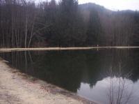 Vu de l'étang en janvier 2008