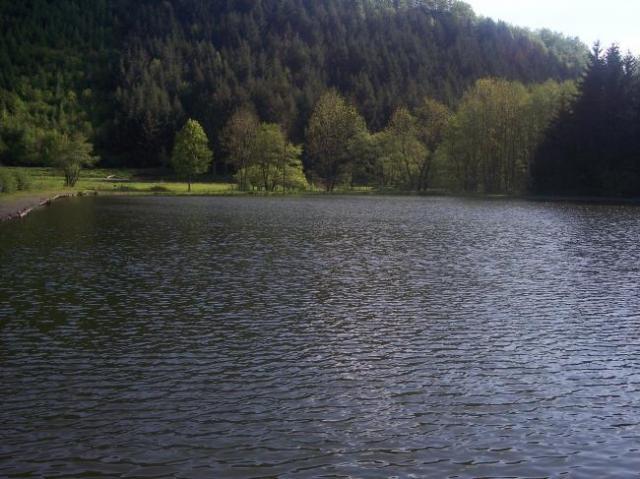 L'étang dans toute sa splendeur