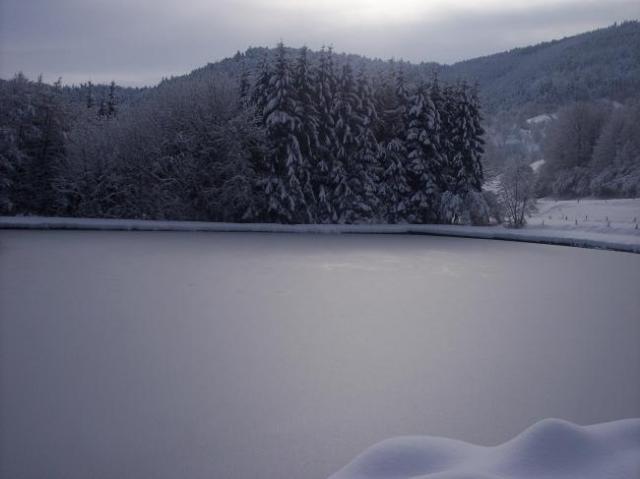 l'étang gelé et enneigé